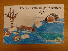 First Grade Garden: Freebies - animals in winter, bear books and comparison activities, with many books listed RL