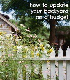 Create a Summer-Ready Backyard!