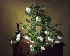 """Irina Prikhodko - """"Still Life with Wild Roses"""" Still Life, Floral Wreath, Wreaths, Plants, Roses, Photography, Home Decor, Floral Crown, Photograph"""