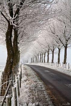 Melissant, Bouwdijk, Zuid-Holland.