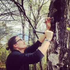 Harvesting Wild Chaga Norway