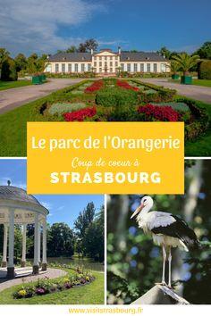 Pour flâner, faire du sport ou prendre un bain de verdure en plein cœur de la ville, rendez-vous dans le plus grand parc de Strasbourg ! Grand Parc, Tourist Board, Strasbourg, Tourism, Track Bicycle, Bath Soak, Excercise, Spring, Turismo
