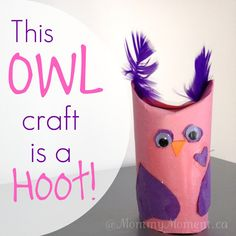 A DIY Owl craft made from a toilet paper roll that is perfect for Valentine's day or for any Owl theme activity!