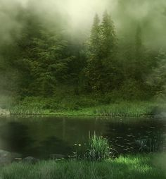 Stillness, quiet, peace. Sit with this picture for a few moments and allow yourself to still. Your soul will thank you.
