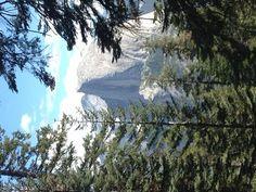 3-Day Yosemite Camping Adventure from San Francisco - San Francisco | Viator