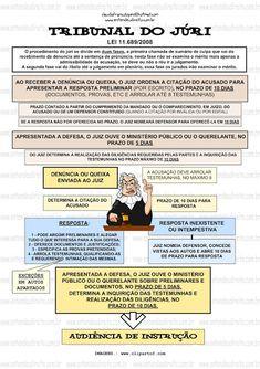 TRIBUNAL DO JÚRI - PRIMEIRA E SEGUNDA FASE - Política, Cidadania e Dignidade