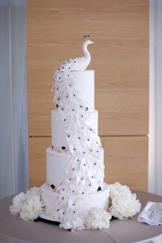 Photography by geminiphotographyontario.com, Floral Design by stemz.ca White peacock cake