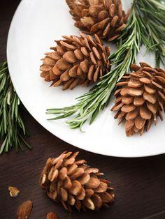 Edible almond pinecones for the Yule Log cake! Christmas Desserts, Christmas Treats, Christmas Baking, Christmas Cakes, Christmas Christmas, Holiday Treats, Pavlova, Yule Log Cake, Holiday Tables