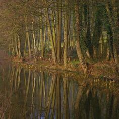 Cromford canal yesterday xx