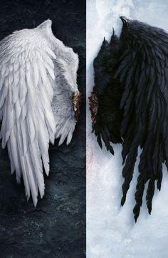Image for Angel wings iPhone 6 wallpaper HD - Wings Wallpaper, Angel Wallpaper, Iphone 6 Wallpaper, Dark Wallpaper, Feather Wallpaper, Perfect Wallpaper, White Wings, Black Wings, Ange Demon