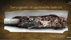 """Smoking """"rots"""" the body from within and damages bones, brain, teeth and eyes, a graphic anti-smoking campaign from Public Health England warns. It also targets misconceptions about roll-ups, saying they are as hazardous as manufactured cigarettes. Quit Tobacco, Smoking Campaigns, Advertising History, Nicotine Addiction, Anti Smoking, Stop Smoke, Roll Ups, Public Health, Mental Health"""