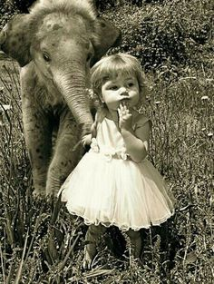 A little girl and baby elephant