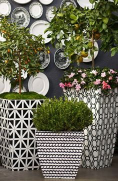 A corded-rope pattern wraps the Madison Black and White Planter in a refreshing twist of contemporary designing. | Frontgate: Live Beautifully Outdoors