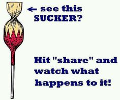 See This Sucker Hit Share « Quotes On Images Lol, Just Do It, Just In Case, Funny Images, Funny Pictures, Look Here, Funny Pins, Looks Cool, The Funny