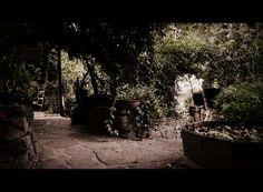 © 2013 ● DODICI | Setting book - photo by: Cristiana D'Alessandro.