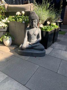Buddha, Statue, Sculpture