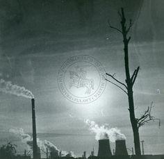 zdjęcie autorstwa Pawła Augustyna, które otrzymało III nagrodę na konkursie fotograficznym zorganizowanym z okazji 80. lecia nadania Puławom praw miejskich; otwarcie wystawy miało miejsce 21 listopada 1986 r.