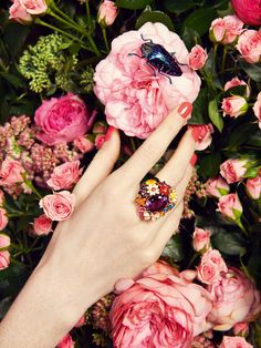 Inset shot - India's jewelled hand picking up a flower out of bouquet (or simply holding a rose).