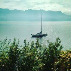 De la fenêtre du train #lacleman #lavaux #switzerland #jamaislassee Train, Celestial, Instagram Posts, Outdoor, Lake Geneva, Outdoors, Zug, Outdoor Living, Garden