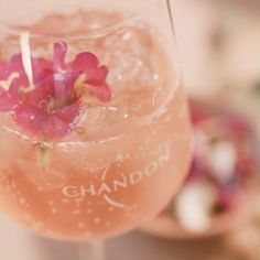 * Fill your glass with ice * Add St Germain Elderflower * Add Fresh Grapefruit * Top with Chandon Sparkling Rosé * Garnish with an Edible flower (or two) * Share! Liquor Drinks, Alcoholic Drinks, Cocktails, High Protein Low Carb, Elderflower, Sparkling Wine, Edible Flowers, Food Diary, High Tea