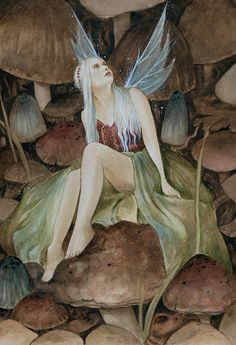 ≍ Nature's Fairy Nymphs ≍ magical elves, sprites, pixies and winged woodland faeries - The Magic Faraway Tree