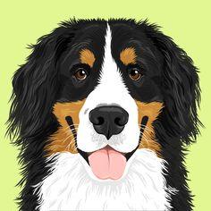 Custom Portrait Gallery - Beatrix & Midge Co Animal Paintings, Animal Drawings, Pet Drawings, Baby Illustration, Digital Illustration, Custom Dog Portraits, Pet Portraits, Happy Art, Animal Faces