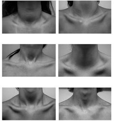 anatomy: neck references