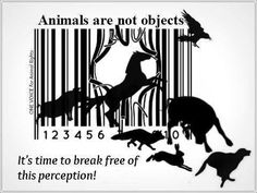 Human Freedom Animal Rights One Struggle One Fight
