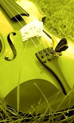 Music is betterin chartreuse.  TG