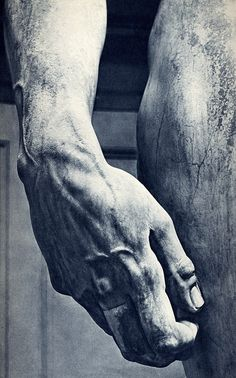 Michelangelo's David, hand detail    by Photo Tractatus