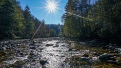 Sill, Tirol; Oktober 2015 - Heimgewässer - Fliegenfischen - Fly Fishing Fly Fishing, Adventure, Water, Spawn, Trout, Water Water, Aqua, Adventure Nursery, Camping Tips