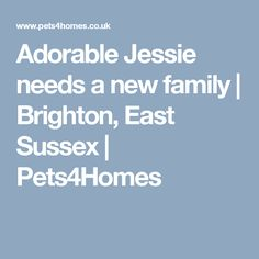 Adorable Jessie needs a new family | Brighton, East Sussex | Pets4Homes