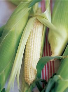 Barefoot Contessa - Recipes - Grilled Corn on the Cob