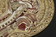 New Quilled Paper Anatomy by Lisa Nilsson - holy what!?