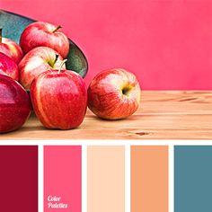beige-orange, blue-green, burgundy, carrot color, color of teals, color selection for house, color solution, crimson, deep blue, deep blue and burgundy, orange and deep blue, pink and deep blue, shades of pink, warm peach, wood color.