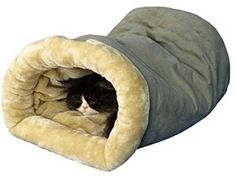 Armarkat Burrow Pet Cat Beds for Cats and Small Dogs >>> See this great product. (Note:Amazon affiliate link)