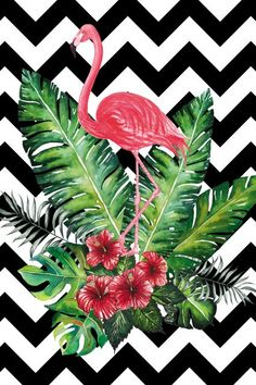 Black & white chevron w/ Flamingo, pink hibiscus flowers & palm fronds - The greatest idea for room decoration, make poster or wallpaper with this picture. Flamingo Wallpaper, Tropical Wallpaper, Flamingo Art, Pink Flamingos, Wall Wallpaper, Pattern Wallpaper, Wallpaper Backgrounds, Iphone Wallpaper, Phone Backgrounds
