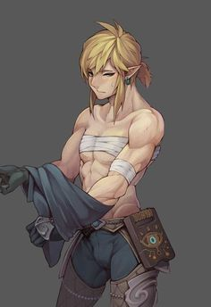 Zelda Breath of the Wild ~ Link