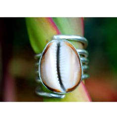 Twining Cowrie Shell Ring