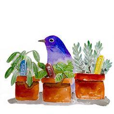 "Better late than never, my ""fresh herbs"" for #ifdrawaweek #ifdrawaweek52 and of course I had to have a little bird in there too. #birdillustration #birdstagram #audubonsociety #freshherbs #herbs #draweverydaydraweveryway  #drawaday  #cbdrawaday  #yearofcreativehabits  #makeart #makeartthatsells  #artoftheday #dailypractice #painteveryday #creativelifehappylife #watercolorpainting #watercolour  #sketchbook #creativehabits #carveouttimeforart #illustration #illustrationart #creativelife…"