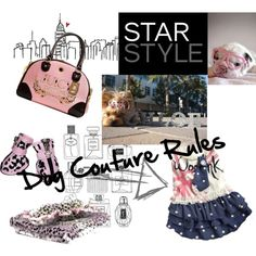 """""""Dog Couture Rules"""" by chloe-polka-dot-yorkie on Polyvore"""