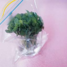 How to Store Leafy Herbs So They Last Longer