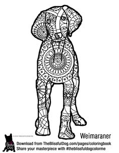 Gordon pixlr page a book pinterest ps for Weimaraner coloring pages