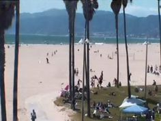 Live beach cam from Sidewalk Cafe