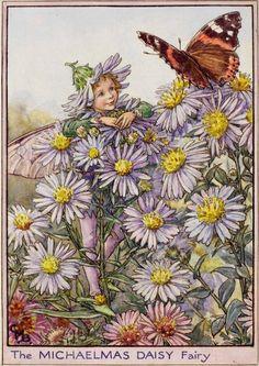 Cicely Mary Barker, Vintage Fairies, Vintage Flowers, Illustrations, Illustration Art, Michaelmas Daisy, Flower Fairies, Fairy Land, Dragons
