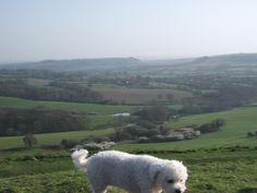 Ballbarrel hill