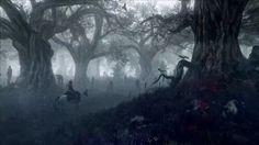 The Witcher 3 Gamescom Screenshot Forest
