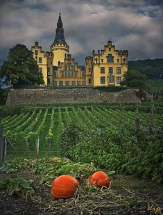 Arenfels Castle, Germany