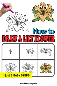 Lily, Drawings, Flowers, Orchids, Sketches, Drawing, Royal Icing Flowers, Portrait, Lilies
