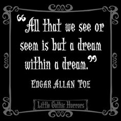 All that we see or seem is but a dream within a dream--Edgar Allen Poe